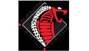 web-header-sponsor-logo-BFF